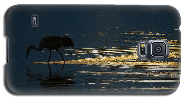Light Trails Galaxy S5 Case
