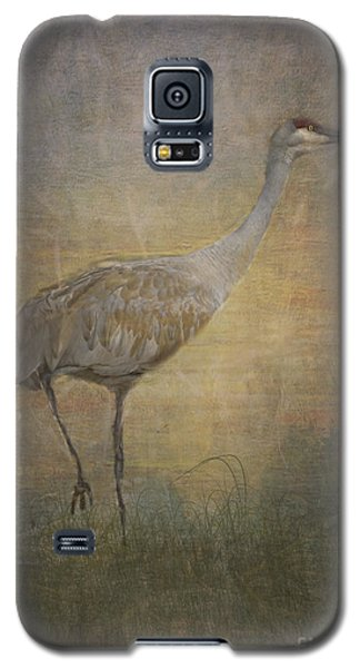 Sandhill Crane Watercolor Galaxy S5 Case