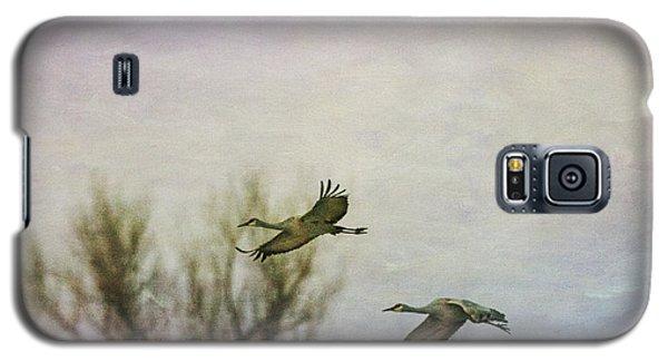 Sandhill Cranes Flying - Texture Galaxy S5 Case