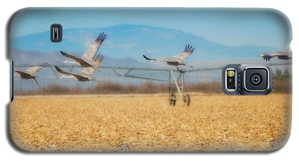 Sandhill Cranes In Flight Galaxy S5 Case