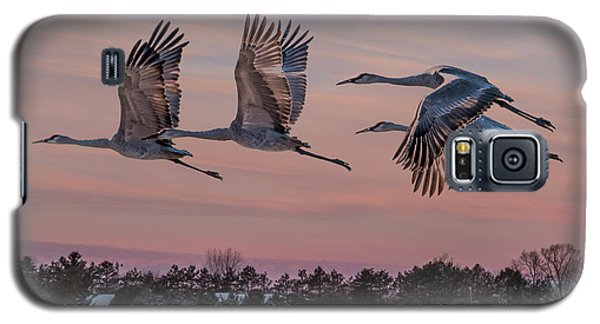 Sandhill Cranes In Flight Galaxy S5 Case by Patti Deters