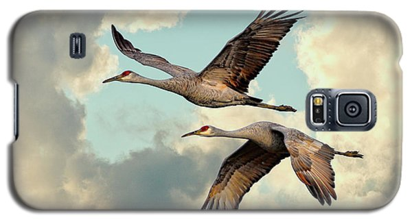 Sandhill Cranes In Flight Galaxy S5 Case by Steven Llorca