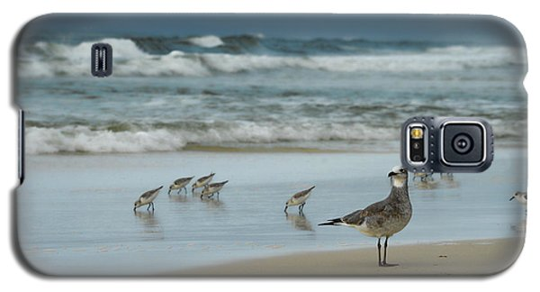 Galaxy S5 Case featuring the photograph Sandpiper Beach by Renee Hardison