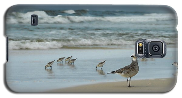 Sandpiper Beach Galaxy S5 Case by Renee Hardison