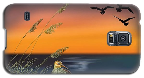 Sandpiper For Angel Galaxy S5 Case