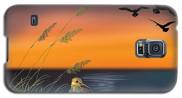 Sandpiper For Angel Galaxy S5 Case