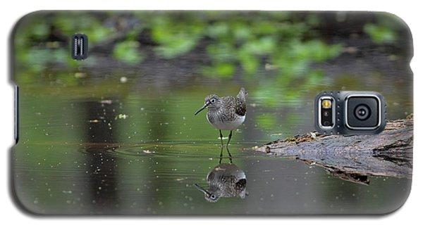 Sandpiper In The Smokies Galaxy S5 Case by Douglas Stucky
