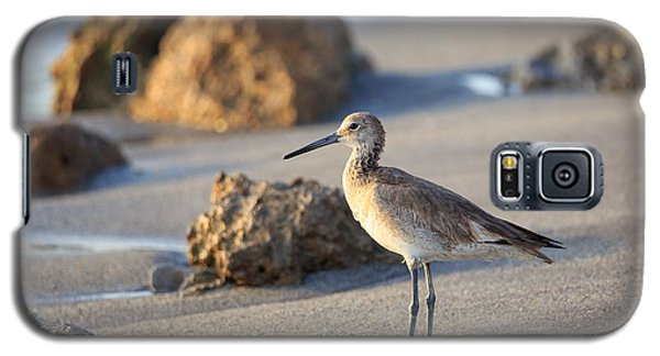 Sandpiper Galaxy S5 Case