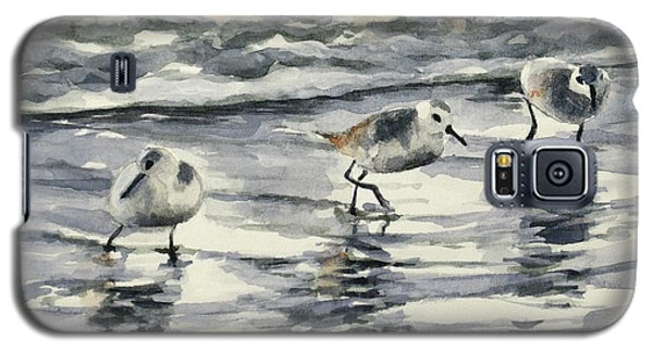 Sandpipers 3  12-11-17 Galaxy S5 Case
