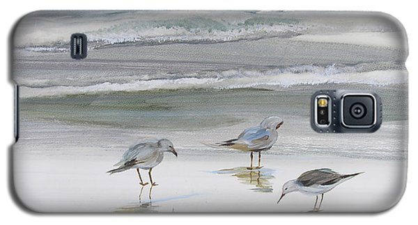 Sandpipers Galaxy S5 Case