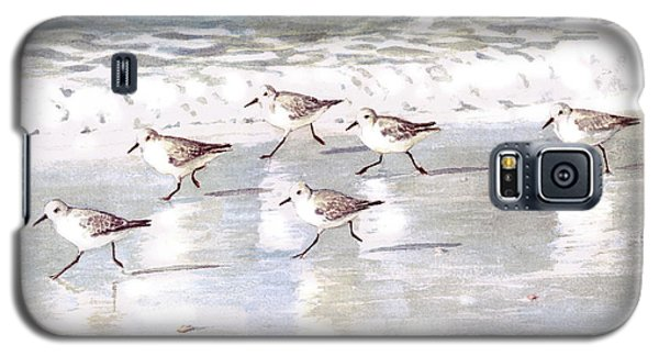 Sandpipers On Siesta Key Galaxy S5 Case by Shawn McLoughlin
