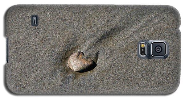 Sandstone Galaxy S5 Case by Victoria Harrington