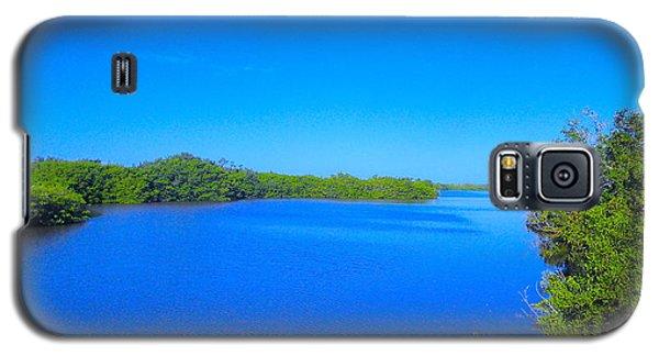Sanibel Island, Florida Galaxy S5 Case