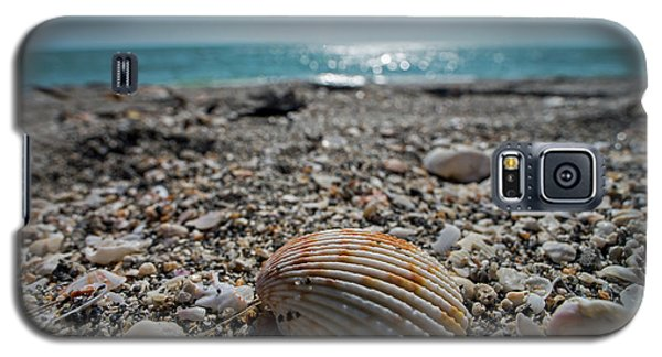 Sanibel Island Sea Shell Fort Myers Florida Galaxy S5 Case