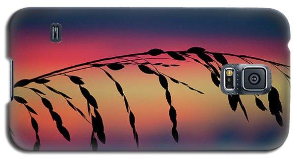 Galaxy S5 Case featuring the photograph Sanibel Sea Oats by Melanie Moraga
