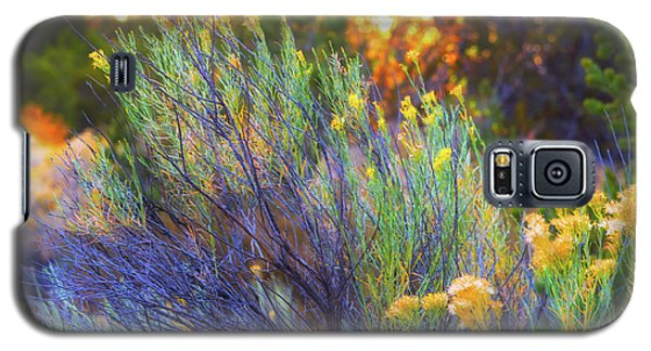Galaxy S5 Case featuring the photograph Santa Fe Beauty by Stephen Anderson