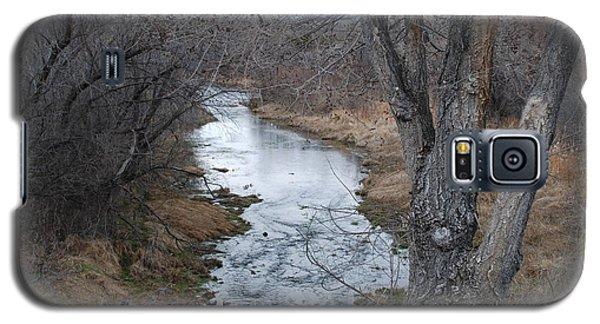 Santa Fe River Galaxy S5 Case