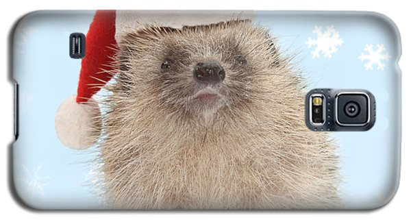 Santa's Prickly Pal Galaxy S5 Case