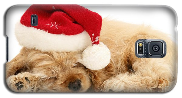 Santa's Sleepy Spaniel Galaxy S5 Case