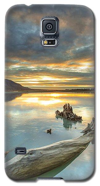 Saphire Galaxy S5 Case