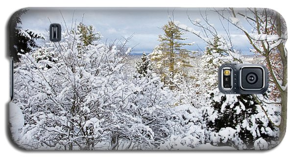 Saratoga Winter Scene Galaxy S5 Case by Lise Winne
