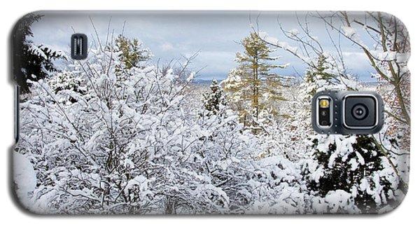 Saratoga Winter Scene Galaxy S5 Case
