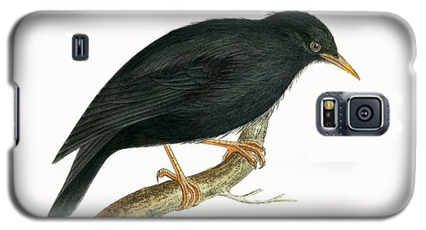 Sardinian Starling Galaxy S5 Case