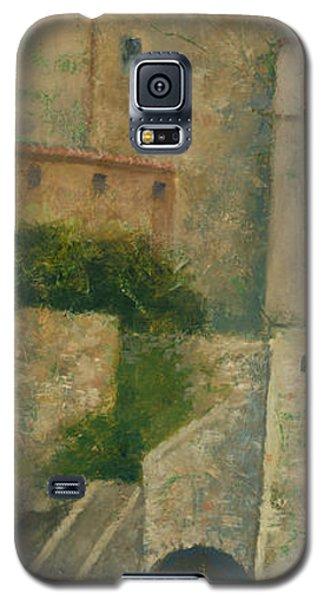 Sartene Corsica Galaxy S5 Case