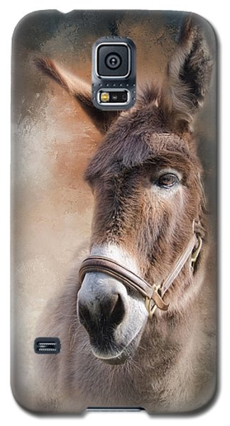 Galaxy S5 Case featuring the photograph  Lil Sassafrass by Robin-Lee Vieira