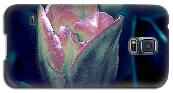 Galaxy S5 Case featuring the photograph Satin by Elfriede Fulda