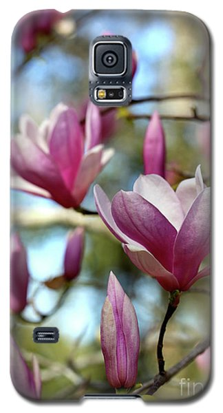 Saucer Magnolia Galaxy S5 Case - Saucer Magnolia Time by Carol Groenen