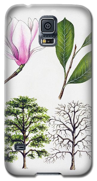 Saucer Magnolia Galaxy S5 Case - Saucer Magnolia by Unknown