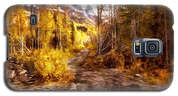 Sawmill Road Galaxy S5 Case