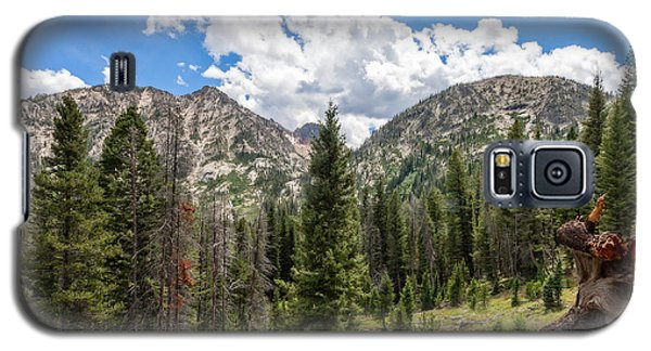 Sawtooth Wilderness 1 Galaxy S5 Case