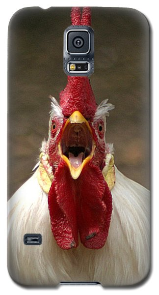 Say Ahh Galaxy S5 Case by Living Color Photography Lorraine Lynch