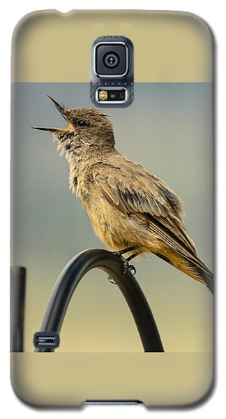 Say's Phoebe Singing Galaxy S5 Case