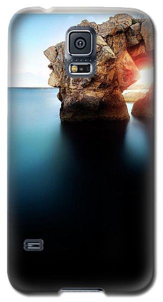 Scales  Galaxy S5 Case