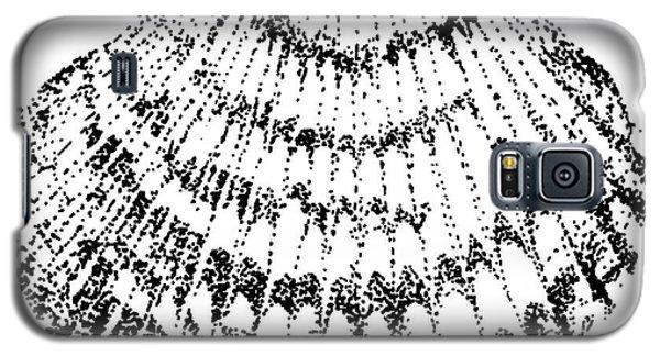 Scallop Galaxy S5 Case