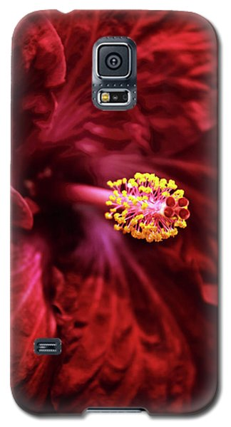 Scarlet Hibiscus Galaxy S5 Case by Jessica Jenney