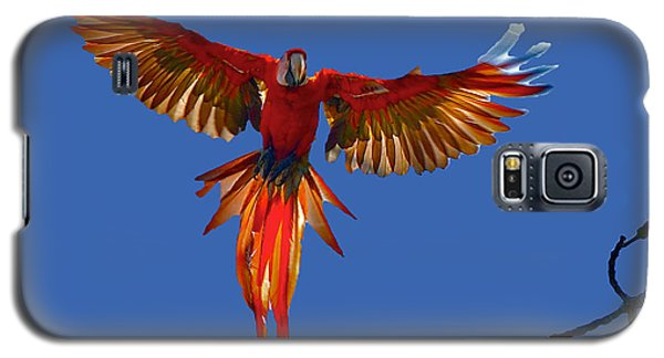 Scarlet Macaw On The Osa Peninsula Galaxy S5 Case