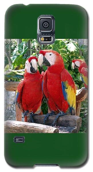 Scarlet Macaws Galaxy S5 Case by Ellen Henneke