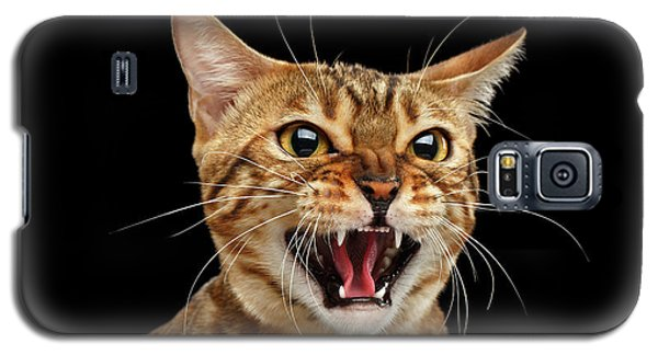 Scary Hissing Bengal Cat On Black Background Galaxy S5 Case