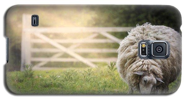 Sheep Galaxy S5 Case - Sheep by Joana Kruse
