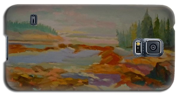 Galaxy S5 Case featuring the painting Schoodic Inlet 2 by Francine Frank