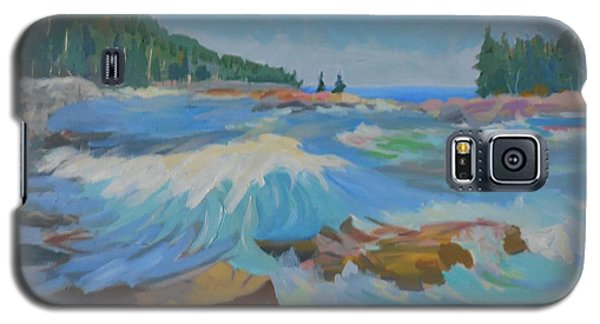 Schoodic Inlet Galaxy S5 Case by Francine Frank