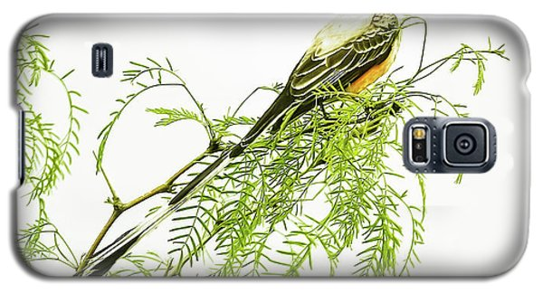 Galaxy S5 Case featuring the photograph Scissortail On Mesquite by Robert Frederick