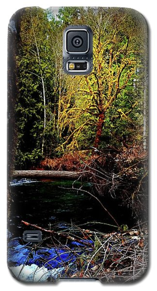 Scoggins Creek 3 Galaxy S5 Case