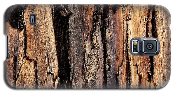 Scorched Timber Galaxy S5 Case