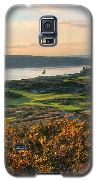 Scotch Broom -chambers Bay Golf Course Galaxy S5 Case by Chris Anderson