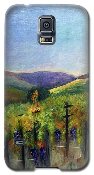 Scotts Vineyard Galaxy S5 Case by Donna Walsh